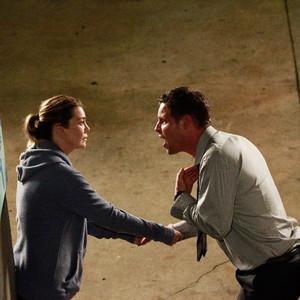 Grey's Anatomy, Season 13, Ellen Pompeo, Justin Chambers