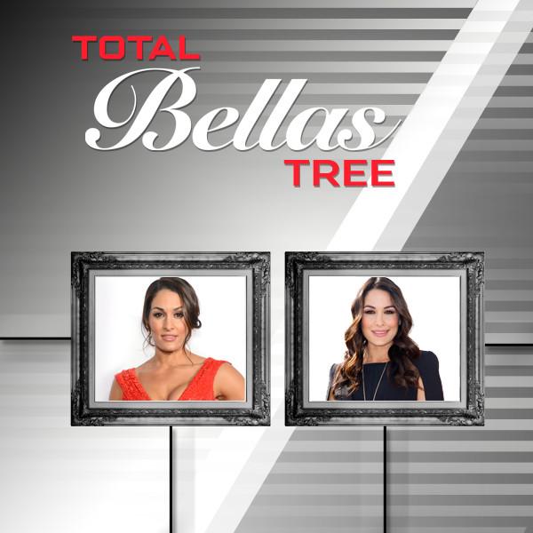 Total Bellas, Family Tree