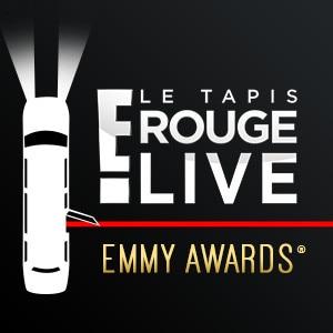 LFRC 2016 Emmys brick