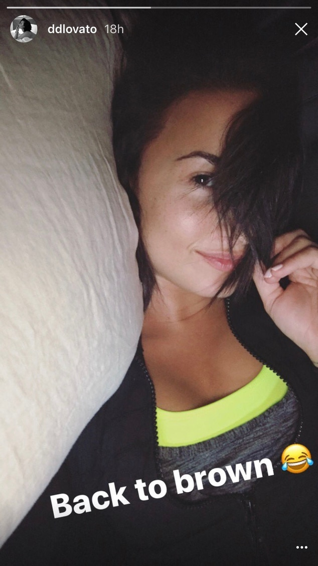 Demi Lovato Switches Her Hair Color For A Second Time In