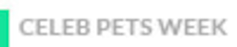 Celebrity Pet, Theme Week Badge