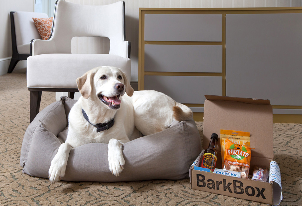 Pet Friendly Hotels, The Benjamin