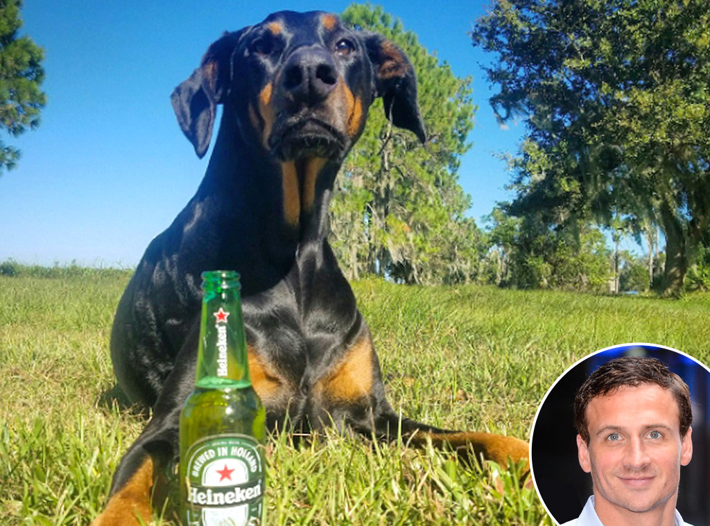 Ryan Lochte, Dog