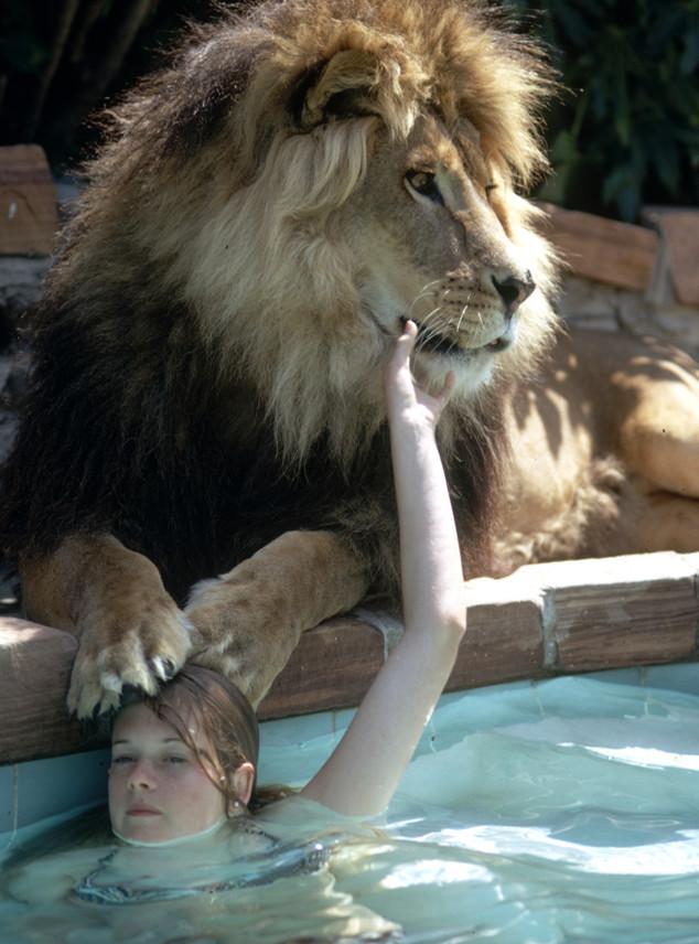 Melanie Griffith, Lion, Unusual Pets