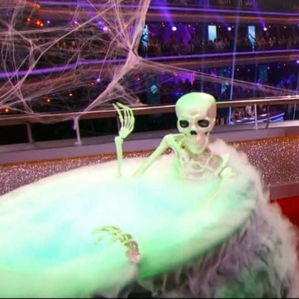 dwts skeleton
