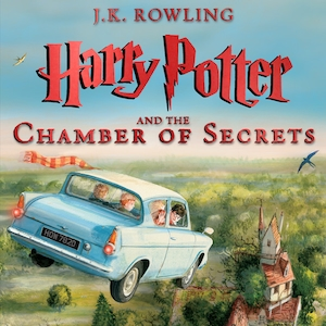 Harry Potter and the Chamber of Secrets Illustrated Edition