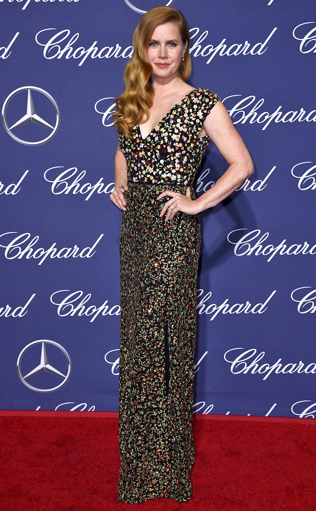 Amy Adams, Palm Springs International Film Festival