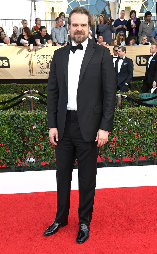 David Harbour, 2017 SAG Awards, Arrivals