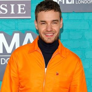 Liam Payne, MTV EMAs 2017
