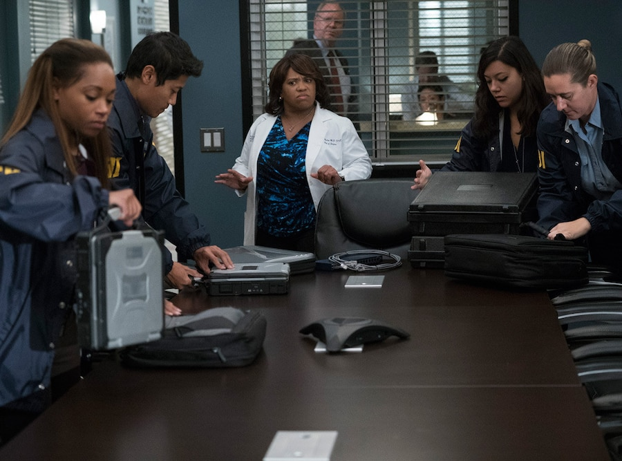 Grey's Anatomy Season 14, Chandra Wilson
