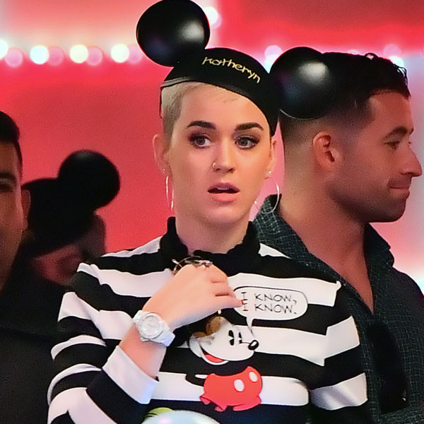 Katy Perry, Disneyland