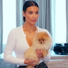 Kim Kardashian, Kardashians