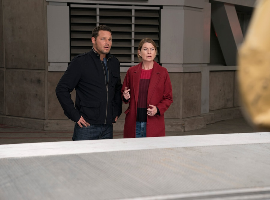 Grey's Anatomy 300th episode, Ellen Pompeo, Justin Chambers