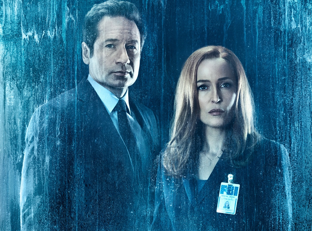 Chris Carter Says He Won't Do More X-Files Without Gillian Anderson