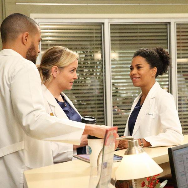 Grey's Anatomy, Season 13