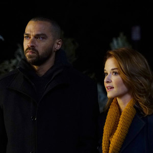 Grey's Anatomy, Jesse Williams, Sarah Drew