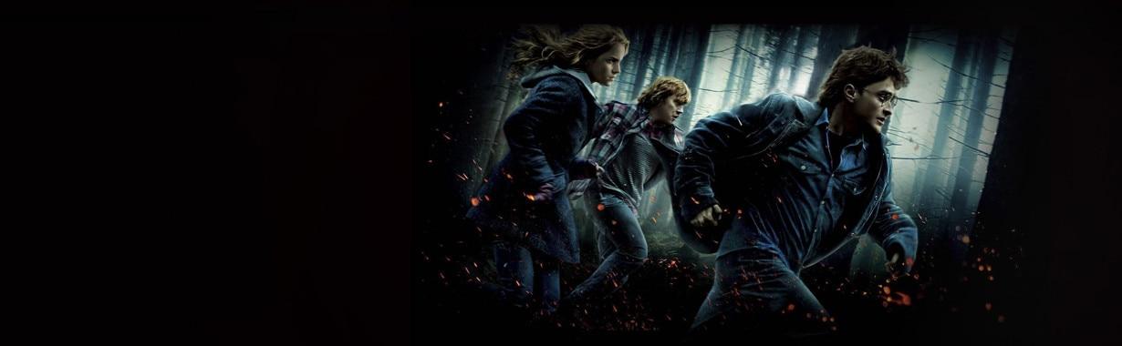 Harry Potter, Hub