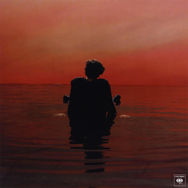 Image result for harry styles sign of the times