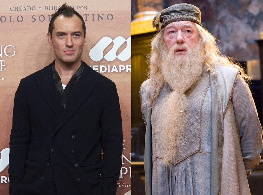 Jude Law, Dumbledore, Harry Potter