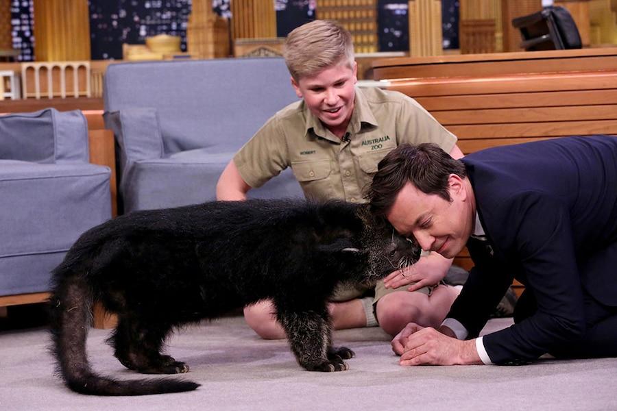 Robert Irwin, Jimmy Fallon, The Tonight Show