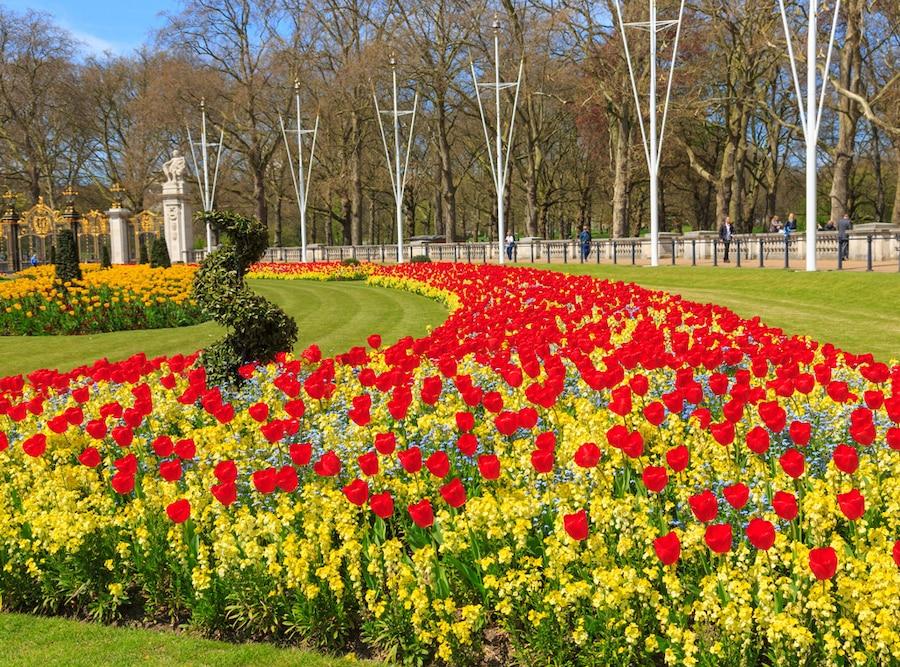 Buckingham Palace, gardens