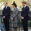 Kate Middleton, Prince William, Prince Harry
