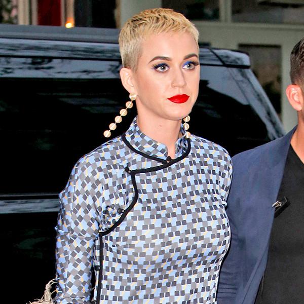 Katy Perry, pret-MET gala dinner