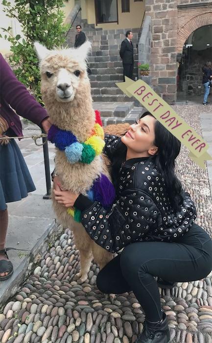 Kylie Jenner, Alpaca, Peru