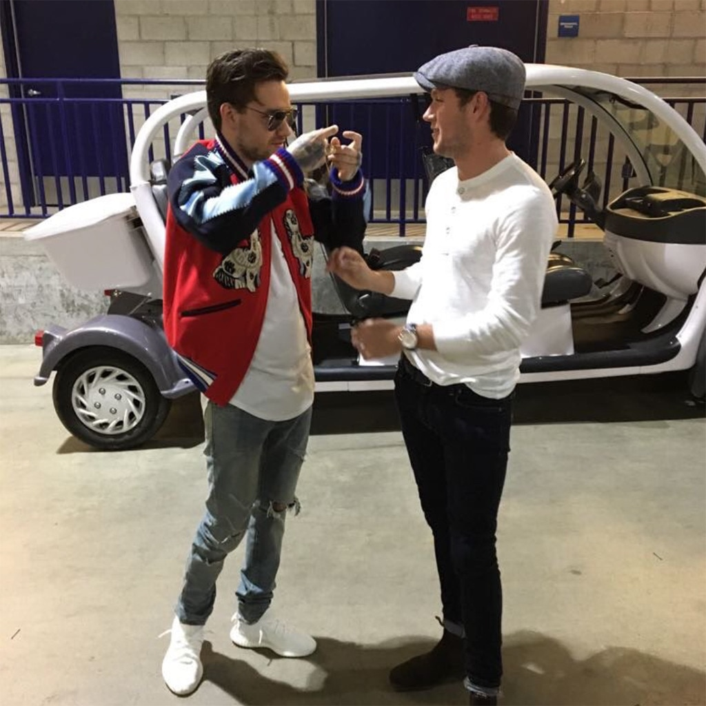 Liam Payne and Niall Horan Reunited in the Best Possible Way