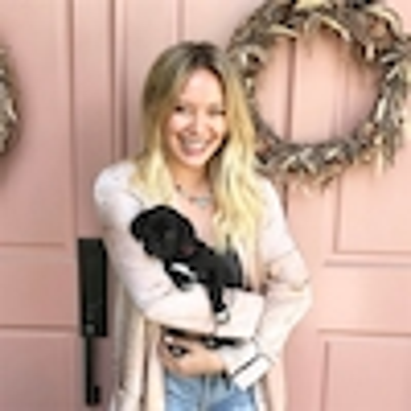 Hilary Duff, Dog, Puppy