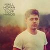 Niall Horan, Slow Hands