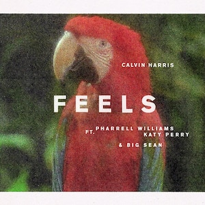 Calvin Harris, Feels