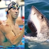 Michael Phelps, Great White Shark