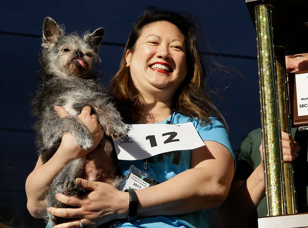 Miriam Cheng, Moe, World's Ugliest Dog Contest