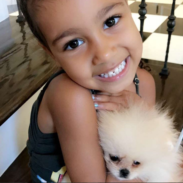 North West, Sushi, Puppy