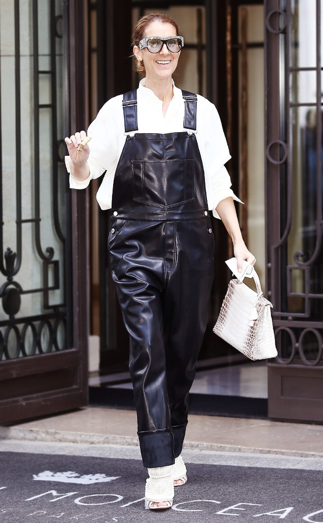 Saturday Savings: Céline Dion's $108K Outfit Is Only A Little More Affordable Now