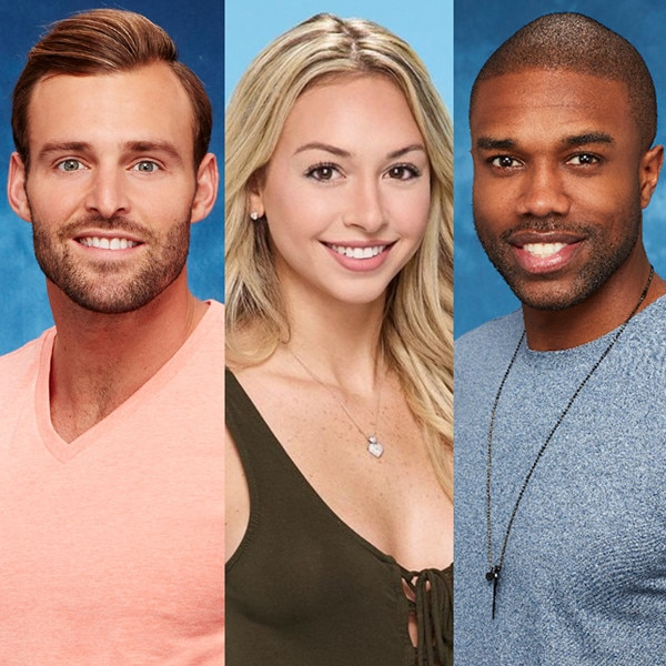 <i>Bachelor in Paradise</i> Season 4: Check Out the Cast!