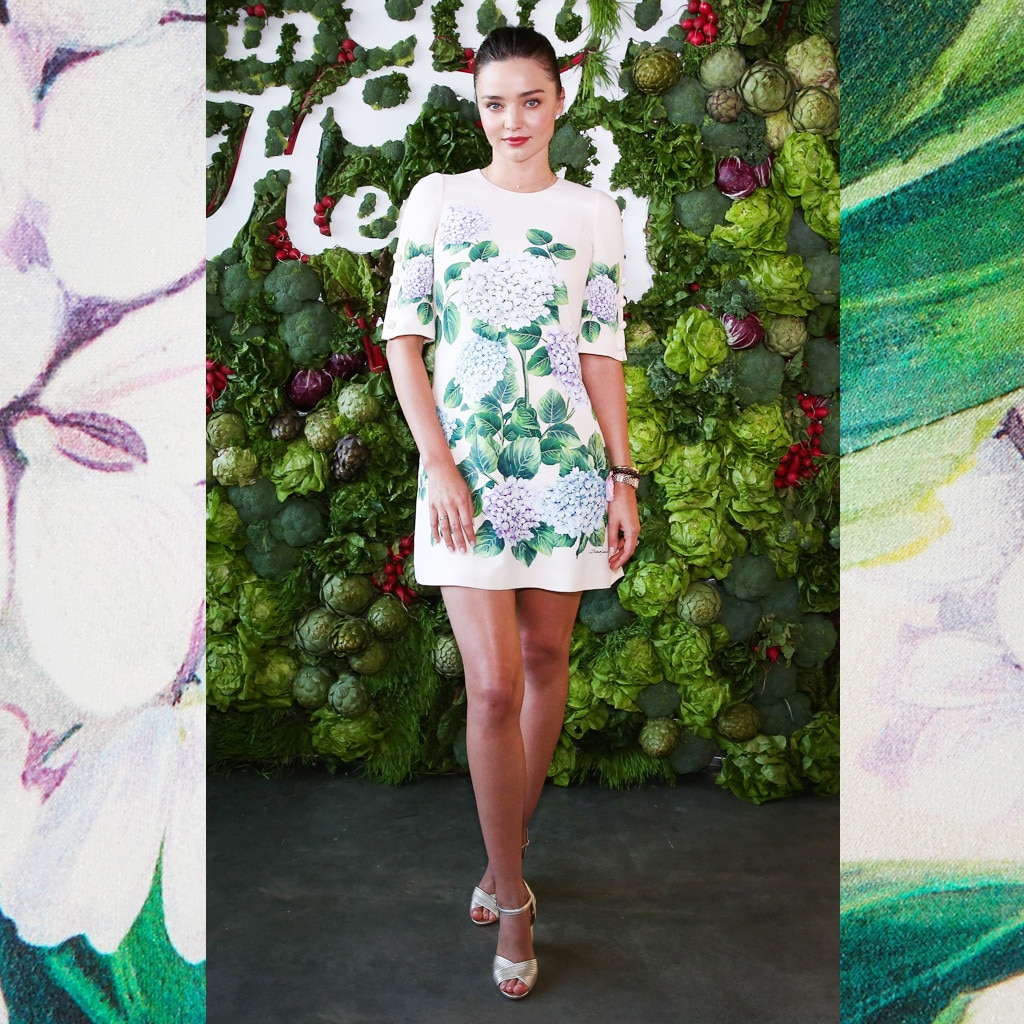 Celebs Love This Dolce amp Gabbana Print Photos