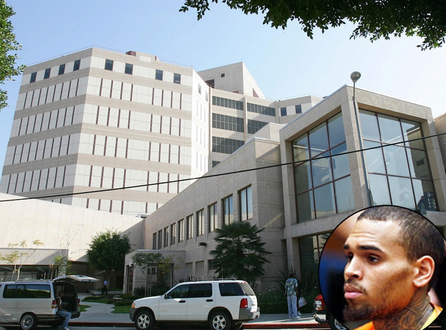 Chris Brown, Men's Central Jail