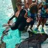 Mariah Carey, Twins, Sharks