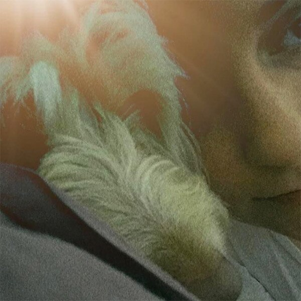 Lena Dunham, Lamby