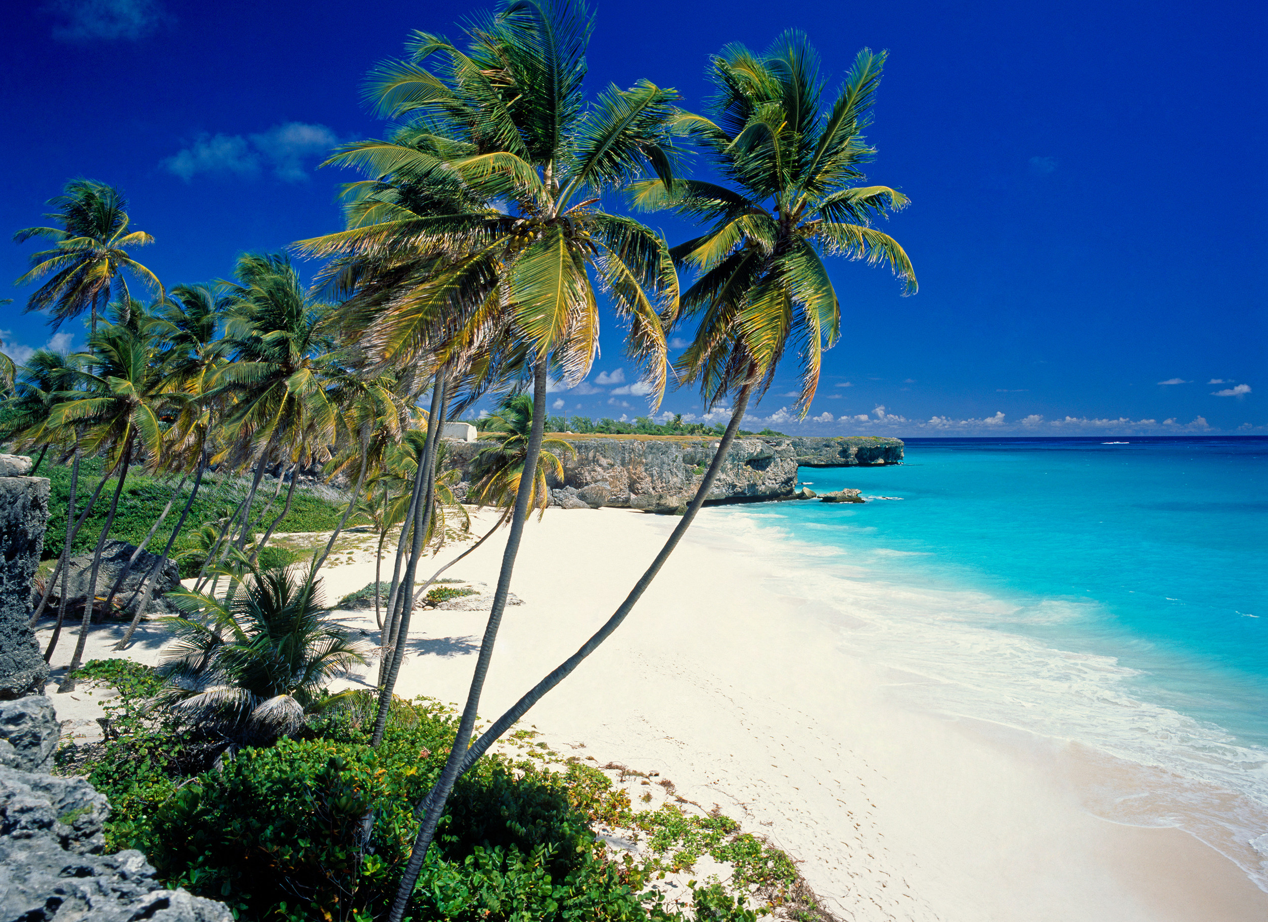 Barbados Bottom Beach