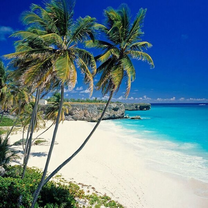 Top 6 Beaches To Visit While Vacationing In Barbados