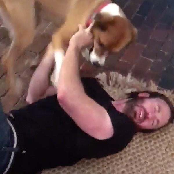 Chris Evans, Dog, Twitter
