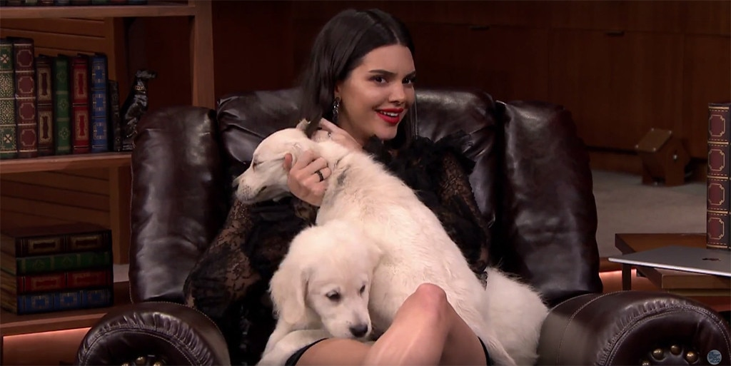 Kendall Jenner, Puppies, Tonight Show