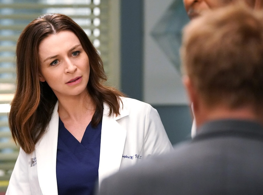 Grey's Anatomy Season 14, Caterina Scorsone