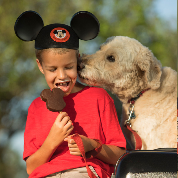 Disney Resorts, Dogs