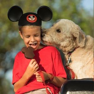 Disney Resorts, Dogs