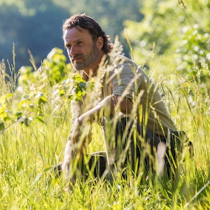 The Walking Dead Season 8, Andrew Lincoln
