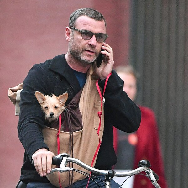Liev Schreiber from The Big Picture: Today's Hot Photos ...